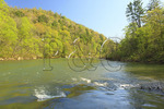 Leatherwood Ford, Cumberland River, Big South Fork National River and Recreation Area, Oneida, Tennessee
