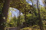 Twin Arches, Big South Fork National River and Recreation Area, Tennessee