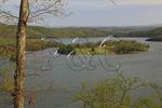 Trooper Island in Dale Hollow Lake State Resort Park, Burkesville, Kentucky