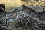 Trash pile at bottom of Cumberland Falls, Cumberland Falls State Resort Park, Corbin, Kentucky