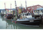 Harbor, Tillamook, Oregon
