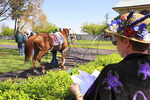 Spectators watch thoroughbreds warm up in paddock before a race at Keeneland Race Course, Lexington, Kentucky