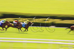Thoroughbreds speed toward the finish line, Spring horse races, Keeneland Race Course, Lexington, Kentucky