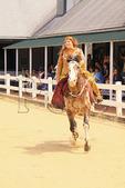 Horse and costumed rider perfom during Parade of Breeds, Kentucky Horse Park, Lexington, Kentucky