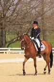 Horse and rider during dressage event, Rolex Three-Day Event, Kentucky Horse Park, Lexington, Kentucky