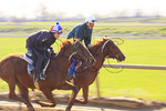 Exercise riders warm up thoroughbreds during early morning workout, The Thoroughbred Center, Lexington, Kentucky
