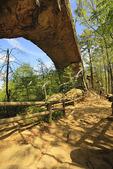 Hiker on trail beneath the Natural Bridge, Natural Bridge State Resort Park, Slade, Kentucky