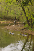 Kayakers on Red River, Red River Gorge Geological Area, Slade, Kentucky