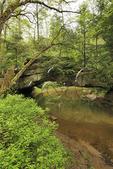 Rock Bridge, Red River Gorge Geological Area, Slade, Kentucky