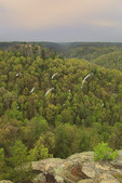 View from Chimney Top Rock, Red River Gorge Geological Area, Slade, Kentucky
