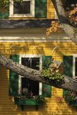 Birdhouse, Woodstock, Vermont