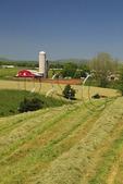Mennonite farmer on tractor mows hay field on farm near Dayton in the Shenandoah Valley, Virginia