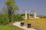 Mennonite buggies on road near Dayton in Shenandoah Valley, Virginia
