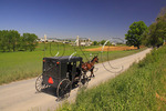 Mennonite buggy on road near Dayton in Shenandoah Valley, Virginia