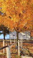 Bicycle parked at Mennonite Church in Dayton, Shenandoah Valley, Virginia