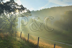 Rays of early morning sunlight cut through the fog on farm at Massies Mill in Nelson County, Virginia