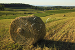 Hay bales in field at farm near Middlebrook, Shenandoah Valley, Virginia