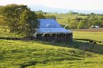 Farm near Middlebrook, Shenandoah Valley, Virginia