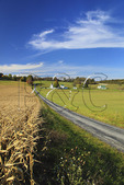 Farm near Middlebrook in Augusta County, Virginia