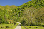 Country road in Western Highland County, Virginia