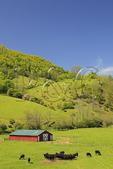 Farm in Western Highland County, Virginia