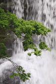 Cascades Waterfall, Little Stony Creek, Pembroke, Virginia