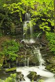 Small Waterfall, Little Stony Creek, Pembroke, Virginia