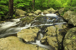 White Oak Canyon Stream, Shenandoah National Park, Virginia