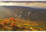 View from Ravens Roost, Blue Ridge Parkway, Virginia