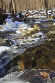 Stream, White Oak Canyon Trail, Shenandoah National Park, Virginia