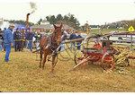 Sorghum Press, Blue Ridge Folk Life Festival, Ferrum, Virginia