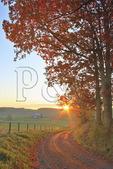 Autumn scene along country road through Swoope farmland, shenandoah valley, virginia