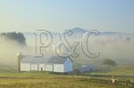 Farm in Swoope in morning fog, Shenandoah Valley, Virginia