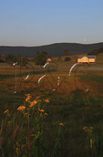 Sunrise and moonset over farm in Swoope, Shenandoah Valley, Virginia