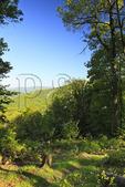 Shenandoah Mountain Trail, Shenandoah Mountain, West Augusta, Virginia