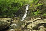 Jones Run Waterfall in Shenandoah National Park, Virginia