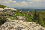 Bear Rocks Preserve, Dolly Sods Wilderness, Hopeville, West Virginia