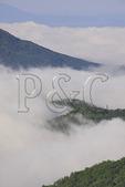 Foggy Morning on Appalachian Trail, Black Rock Summit, Shenandoah National Park, Virginia