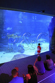 Visitors watch sharks and other fish inside the Norfolk Canyon Aquarium at the Virginia Aquarium and Marine Science Center, Virginia Beach, Virginia, USA