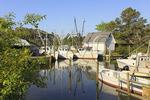 Fishing boats in harbor at Davis, North Carolina, USA