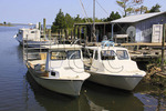 Fishing boats in harbor at Cedar Island, North Carolina, USA