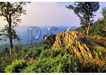 Jewell Ridge, Shenandoah National Park, Virginia