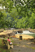 Visitor admires the view of the falls from a bench at Valley Falls State Park, Tygart Valley River, Grafton, West Virginia, USA