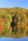Reflections of trees in lake at Town Creek area, Lake Guntersville Resort State Park, Guntersville, Alabama, USA