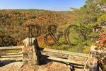 Overlook at Buck's Pocket State Park, Grove Oak, Alabama, USA