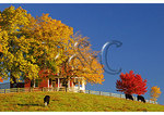 Farm House, Swoope, Shenandoah Valley, Virginia