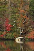 Canoes docked on lake at DeSoto Falls, DeSoto State Park, Fort Payne, Alabama, USA