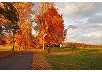 Farm lane, Loudoun County, Virgnia