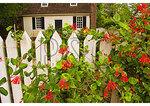 Colonial Garden at Colonial Williamsburg, Virginia