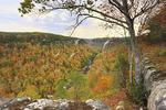 Wolf Creek Overlook, Little River Canyon National Preserve, Fort Payne, Alabama, USA